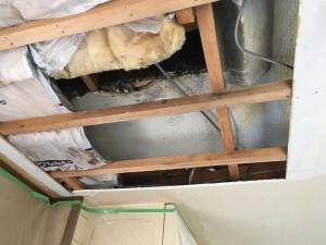 雨漏り 防水 塗装 バルコニー 天井補修