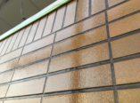 外壁タイル塗装 ダイタク