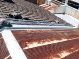 屋根雨漏り ダイタク