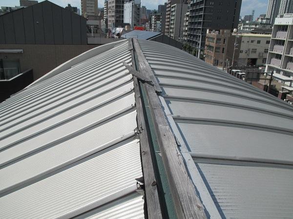 屋根 台風被害 大阪市 DAITAKU
